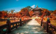 VI VU ĐẾN SEOUL CÙNG GIÁ CỰC ƯU ĐÃI CỦA KOREAN AIR