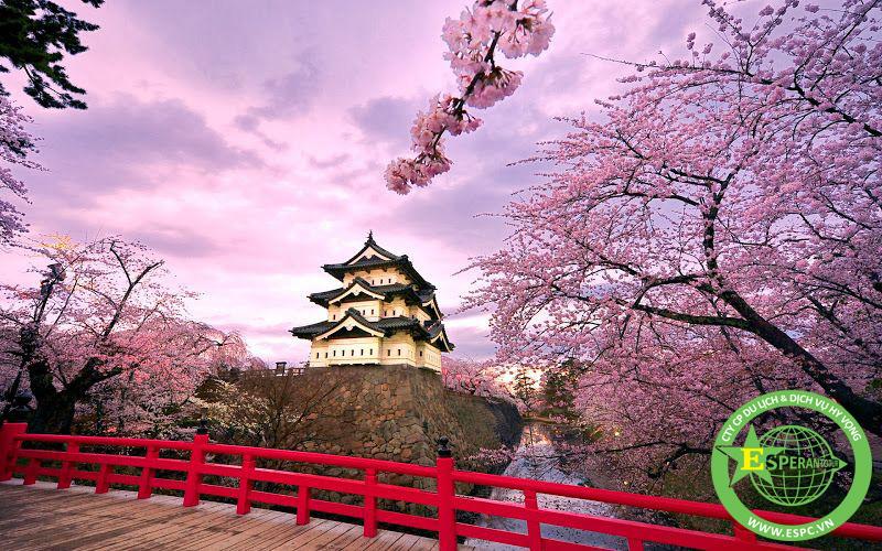 DU LỊCH TOKYO – PHÚ SỸ – NAGOYA – KYOTO – OSAKA