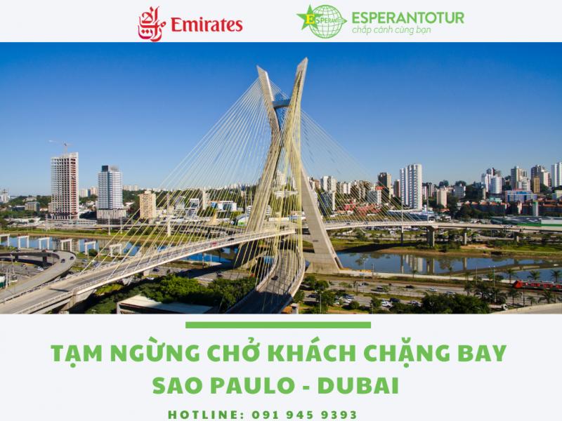 EMIRATES TẠM NGƯNG NHẬN CHỞ KHÁCH CHẶNG BAY SAO PAULO - DUBAI TỚI 28/02/2021