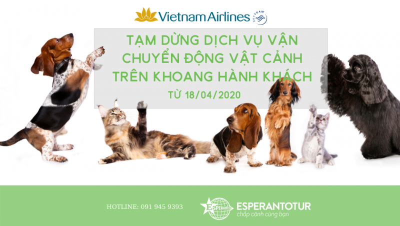 VIETNAM AIRLINES TẠM DỪNG VẬN CHUYỂN ĐỘNG VẬT CẢNH TRÊN KHOANG HÀNH KHÁCH