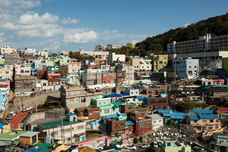 10 trải nghiệm tuyệt vời đáng nhớ ở Busan- Hàn Quốc