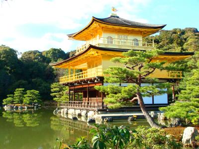TOKYO-FUJI-NAGOYA-KYOTO-OSAKA