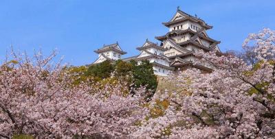 OSAKA – KOBE – KYOTO – NAGOYA –  NÚI PHÚ SĨ – TOKYO, MÙA HOA ANH ĐÀO 2018