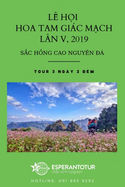Hành trình Khám phá Cao nguyên đá Đồng Văn - Ngắm vẻ đẹp Hà Giang mùa Tam Giác Mạch